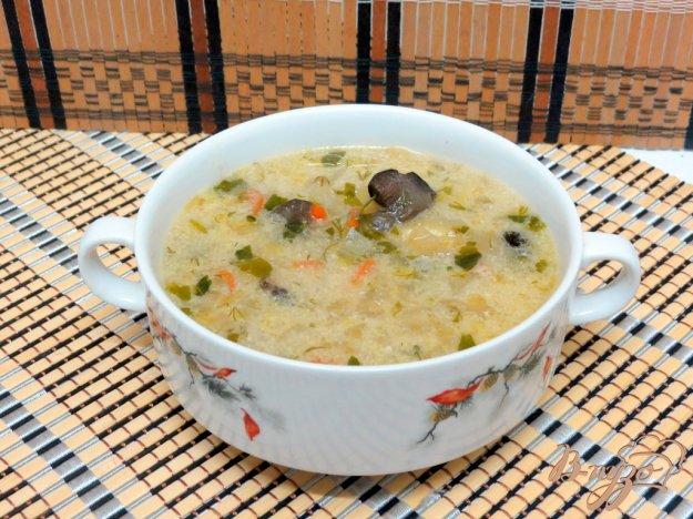 фото рецепта: Щи со свежей капустой и грибами
