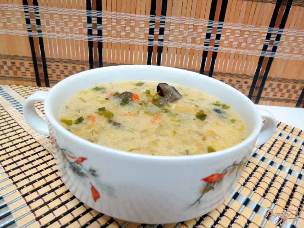 Фото приготовление рецепта: Щи со свежей капустой и грибами шаг №11