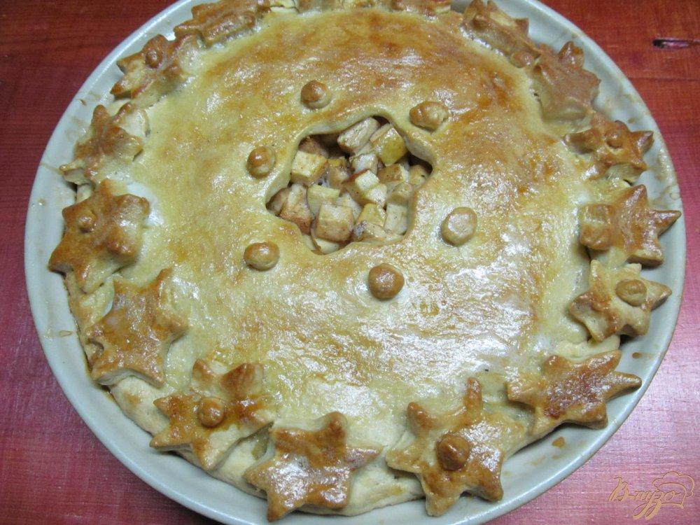 Фото приготовление рецепта: Яблочный пирог шаг №14