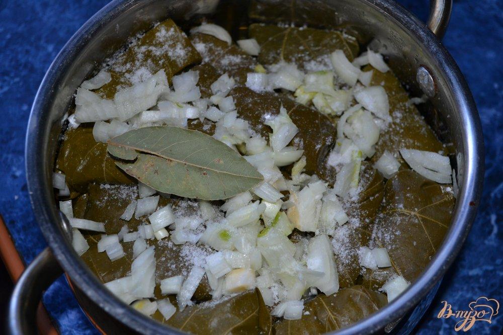 Фото приготовление рецепта: Долма