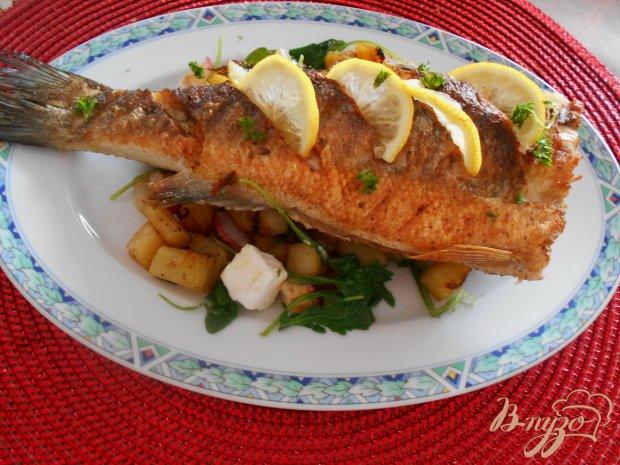 Рыба-гриль с теплым салатом из редиса, фенхеля и рукколы.