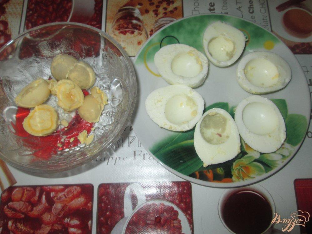 Фото приготовление рецепта: Фаршированные яйца с плавленым сыром и чесноком шаг №1