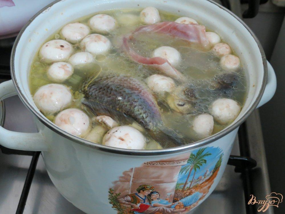 Фото приготовление рецепта: Суп с карасями, грибами и рисом. шаг №7