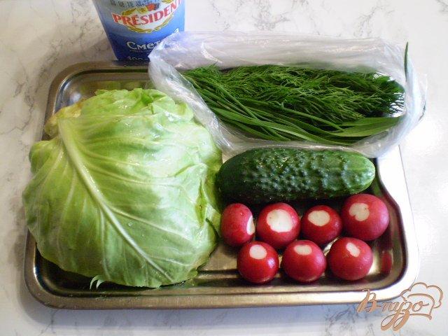 Фото приготовление рецепта: Салат из свежих овощей шаг №1