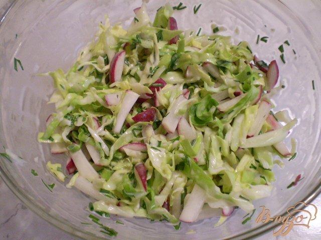 Фото приготовление рецепта: Салат из свежих овощей шаг №7