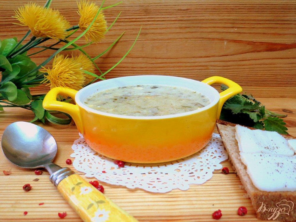 Фото приготовление рецепта: Суп с крапивой и щавелем шаг №11