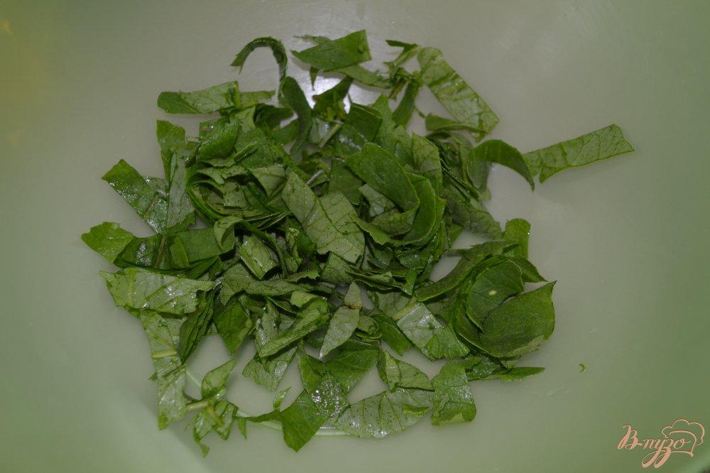 Фото приготовление рецепта: Салат из редиса и зелени шаг №2