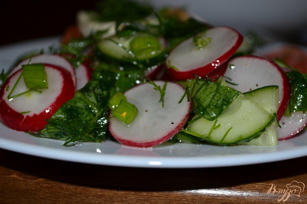 Фото приготовление рецепта: Салат из редиса и зелени шаг №7