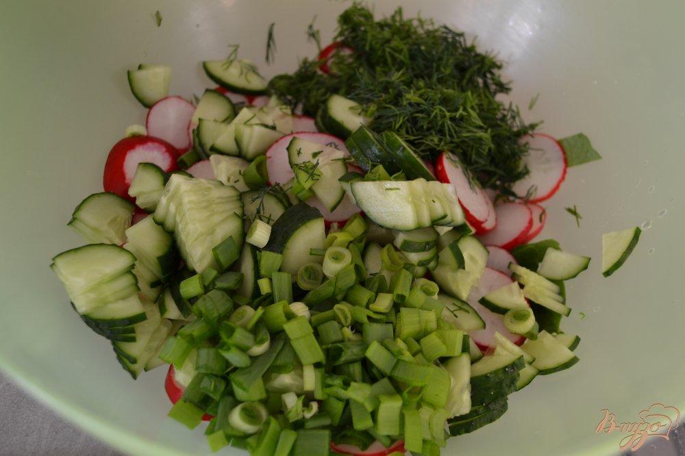 Фото приготовление рецепта: Салат из редиса и зелени шаг №5