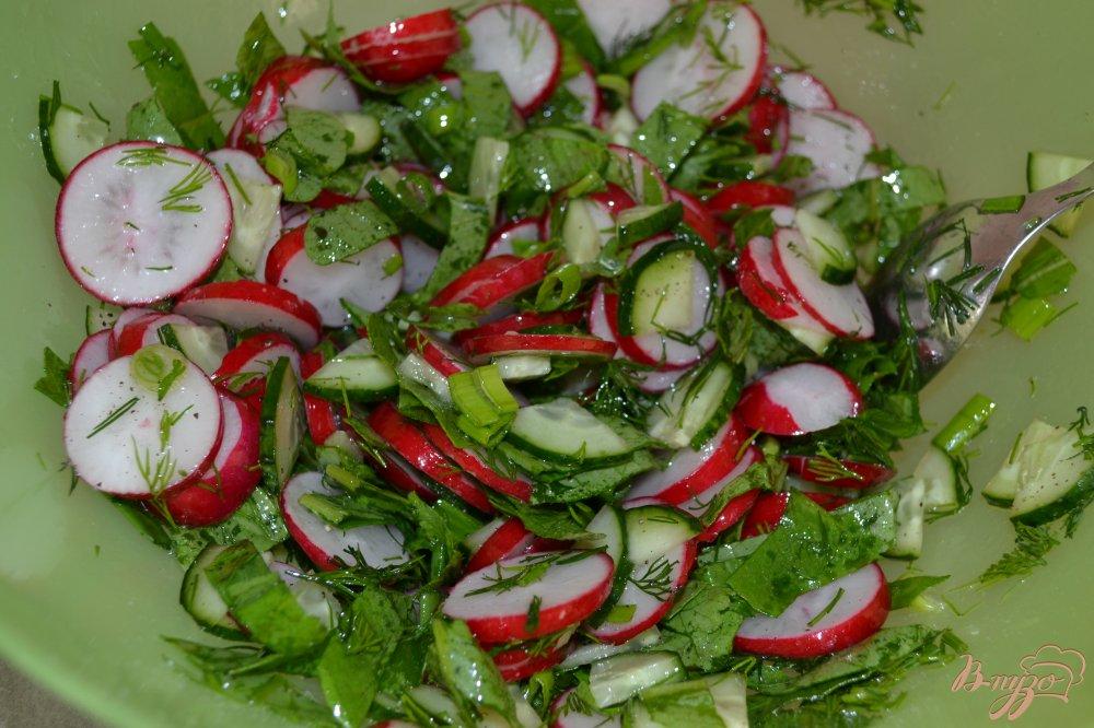 Фото приготовление рецепта: Салат из редиса и зелени шаг №6