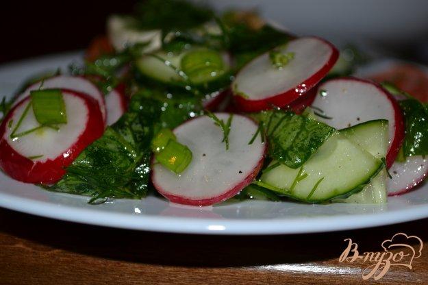 фото рецепта: Салат из редиса и зелени