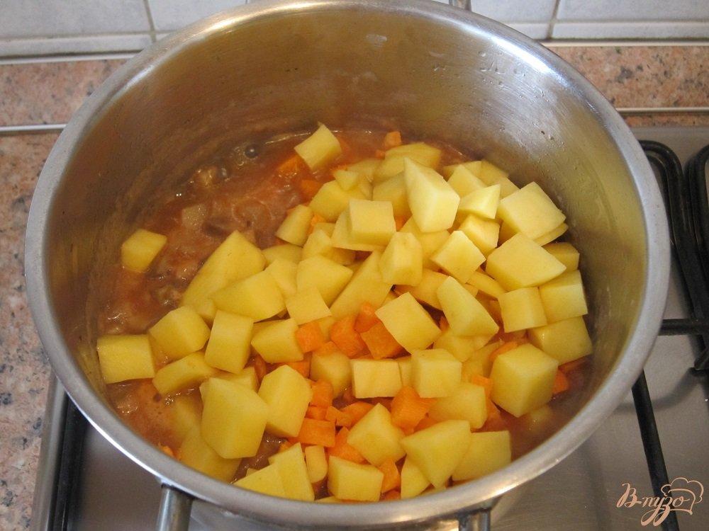 Фото приготовление рецепта: Суп с помидорами и грибами шаг №9
