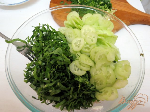 Салат зелёный