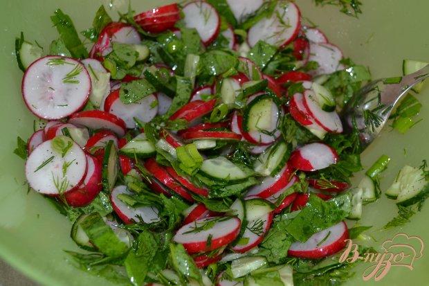 Салат из редиса и зелени