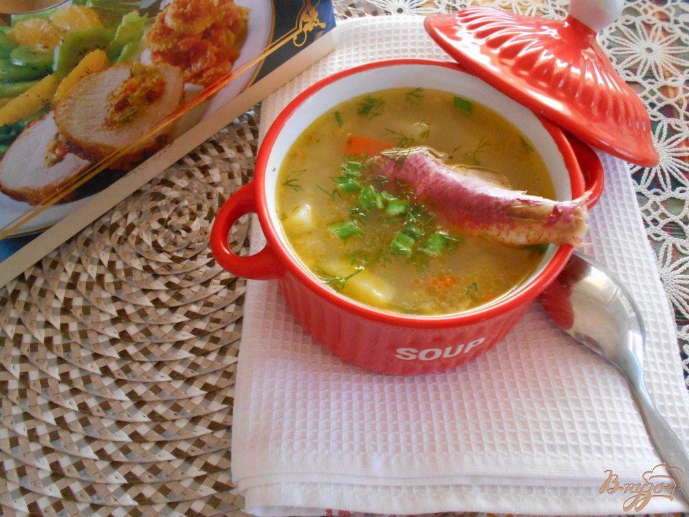 Фото приготовление рецепта: Рыбный суп из барабульки шаг №10