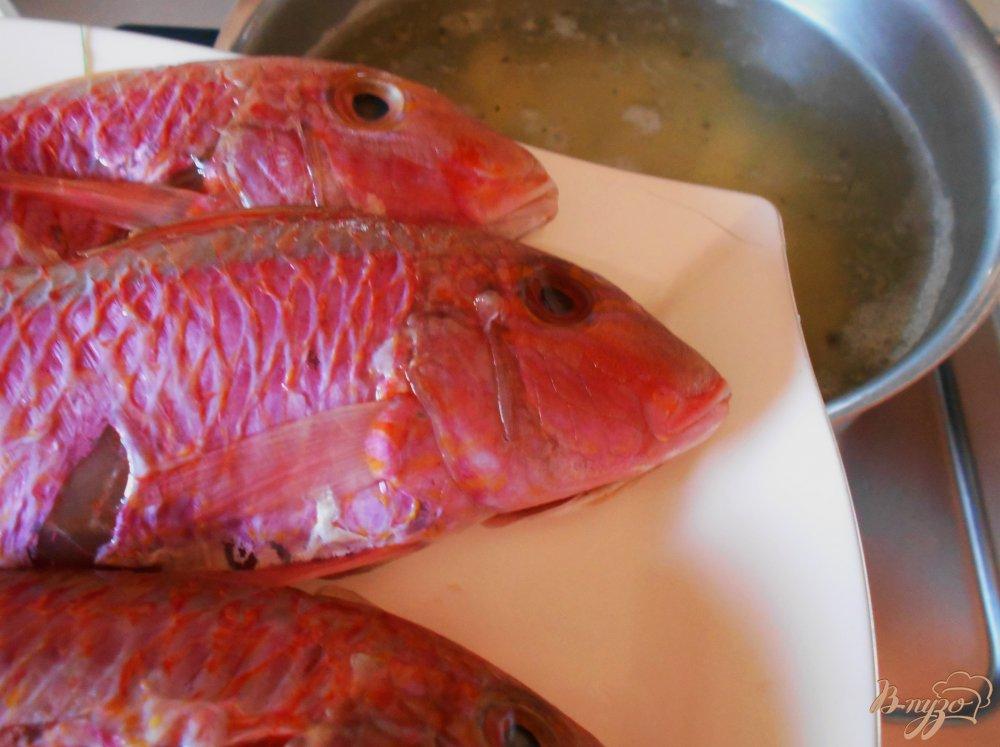 Фото приготовление рецепта: Рыбный суп из барабульки шаг №8