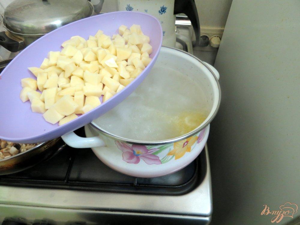 Фото приготовление рецепта: Суп овощной со свежей капустой и грибами шаг №3