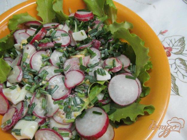 фото рецепта: Салат из редиса и яйца