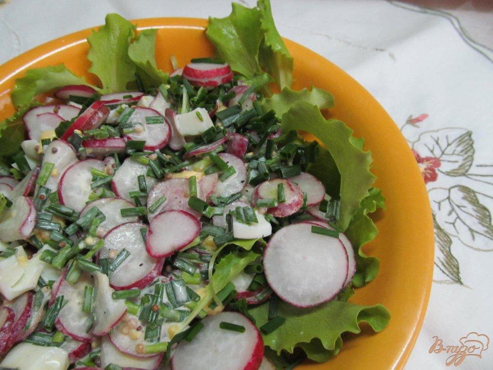 Фото приготовление рецепта: Салат из редиса и яйца шаг №8