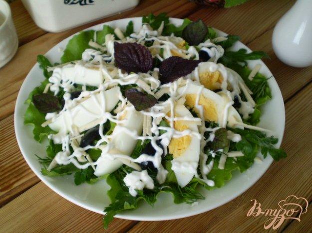 фото рецепта: Салат с яйцом, листьями салата, маслинами и базиликом