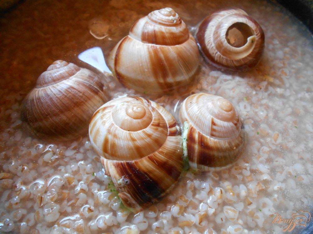 Фото приготовление рецепта: Улитки с пшеничной кашей по-гречески шаг №2