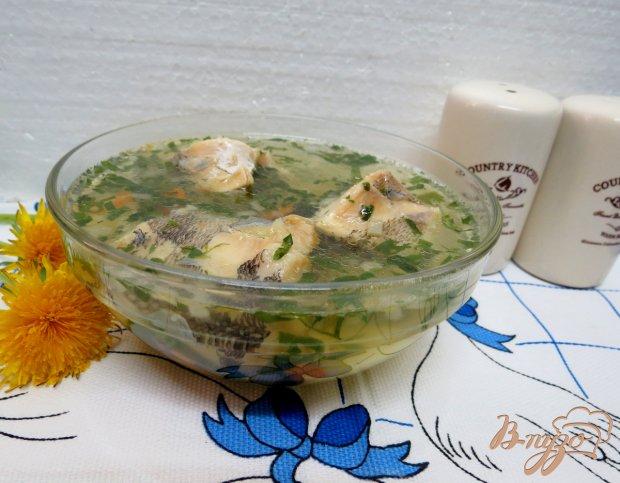 Суп с нототенией и шпинатом