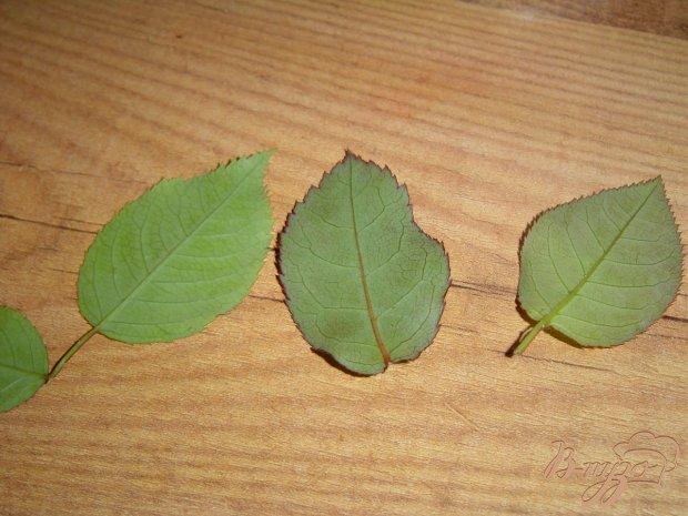 Рецепт Шоколадные листья