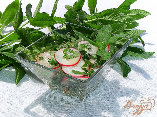 Салат из редиса, мяты и зелени