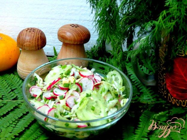 фото рецепта: Салат из редиса с капустой.