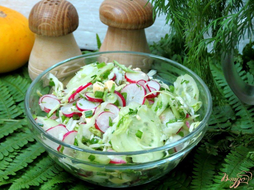 Фото приготовление рецепта: Салат из редиса с капустой. шаг №10