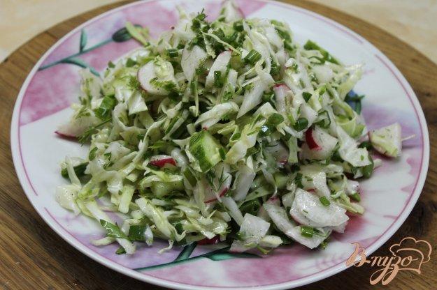 фото рецепта: Салат с молодой капусты с огурцом и редисом