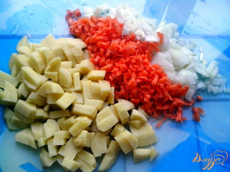 Фото приготовление рецепта: Солянка рыбная шаг №2