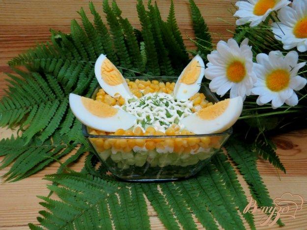 фото рецепта: Салат из огурца, щавеля и кукурузы