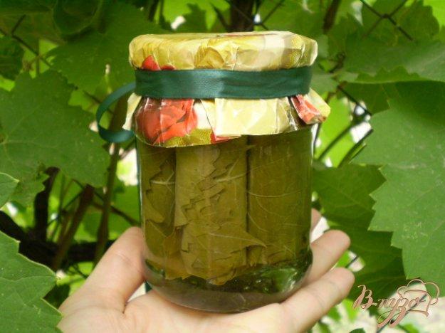 фото рецепта: Листья виноградные для долмы