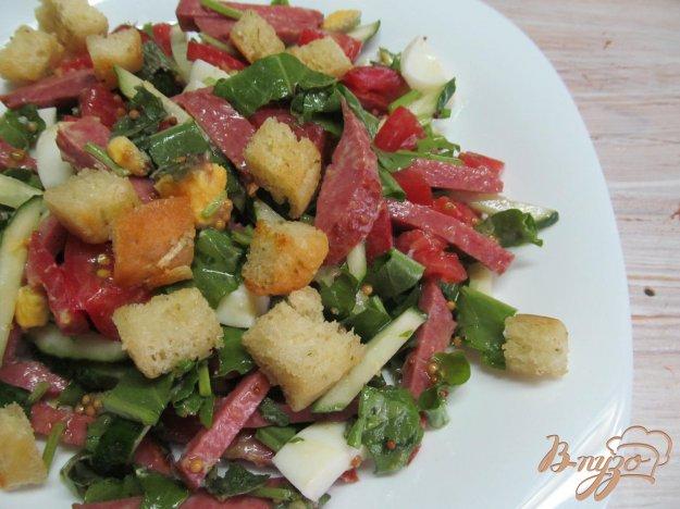 фото рецепта: Салат из овощей колбасы и сухариков