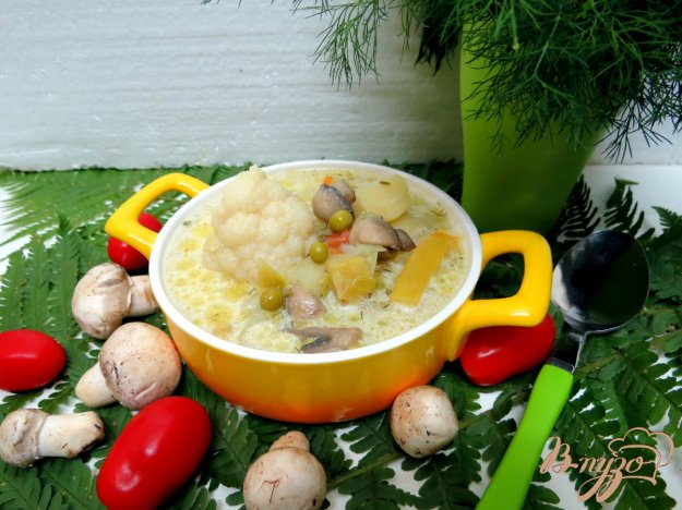 фото рецепта: Овощной суп с шампиньонами
