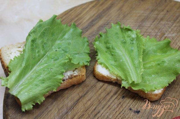 Тост с утиной грудкой и свежими овощами