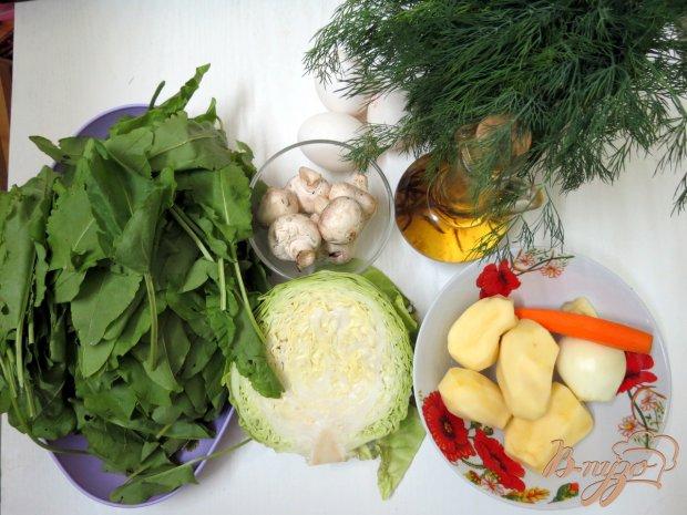 Рецепт Щавелевый суп с грибами и капустой