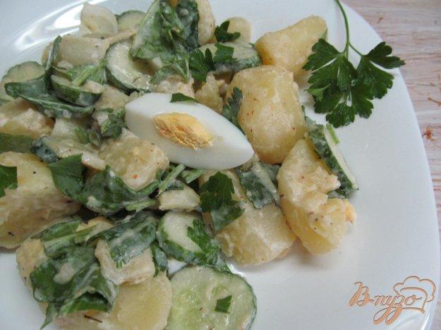 фото рецепта: Теплый салат с молодым картофеле щавелем и паприкой