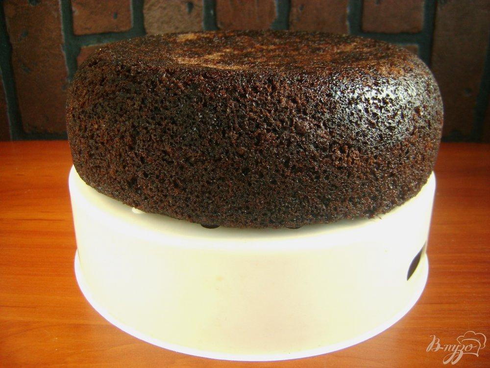 Шоколадный бисквит пышный с фото