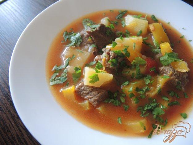 фото рецепта: Густой суп с говядиной