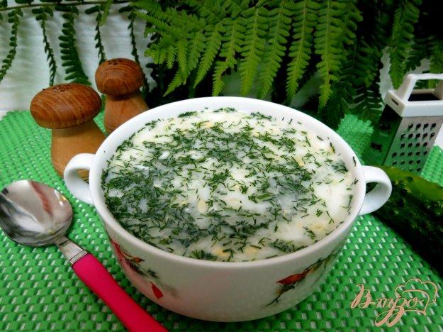 фото рецепта: Холодный суп на кефире и минералке