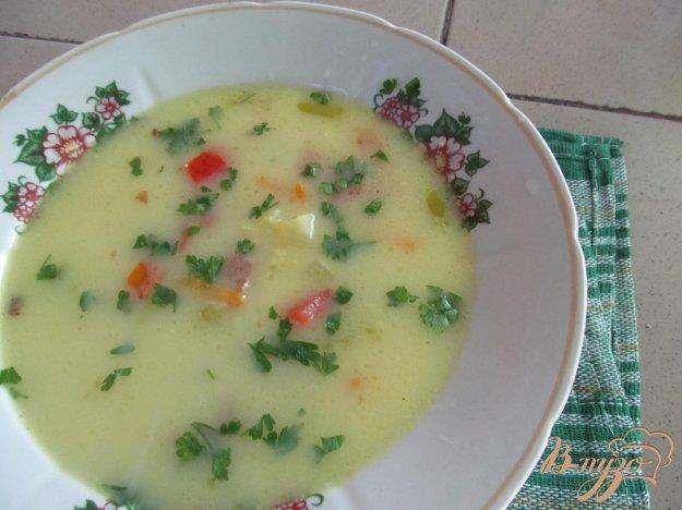 фото рецепта: Суп из свежих овощей на свином бульоне с пшеном
