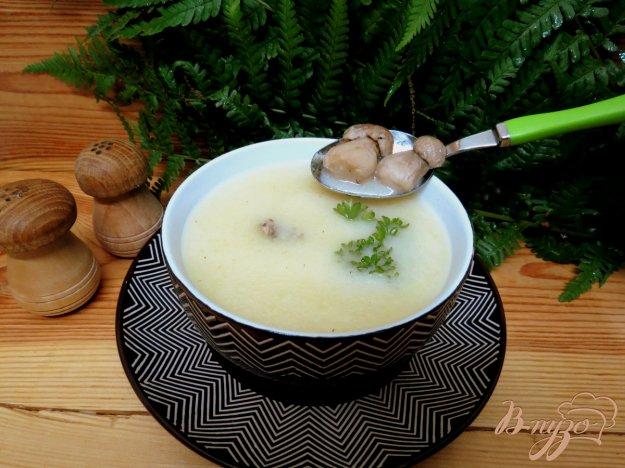 фото рецепта: Суп пюре с белыми грибами