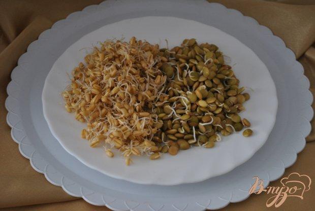 Рецепт Салат с редисом и проростками