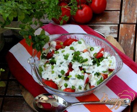фото рецепта: Салат из летних овощей с пикантной творожно-йогуртовой заправкой