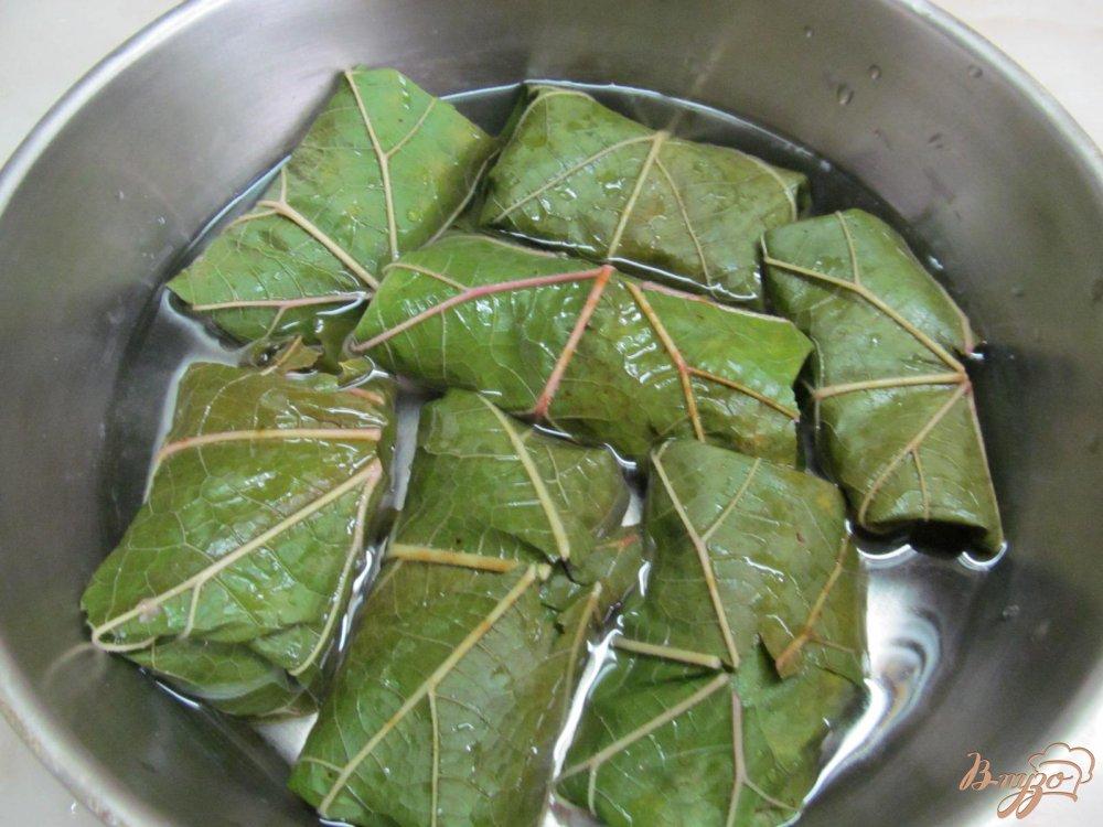 пошаговый рецепт приготовления долмы с фото