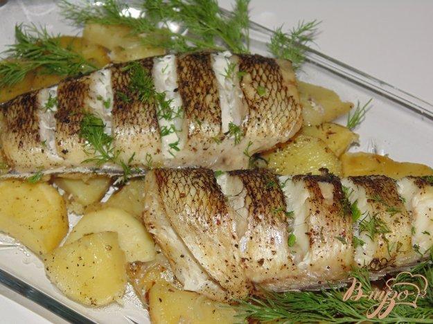 фото рецепта: Нототения на картофельной подушке