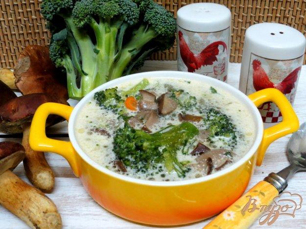 фото рецепта: Суп с брокколи и лесными грибами