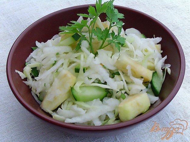фото рецепта: Салат из редьки, капусты,огурца и яблока
